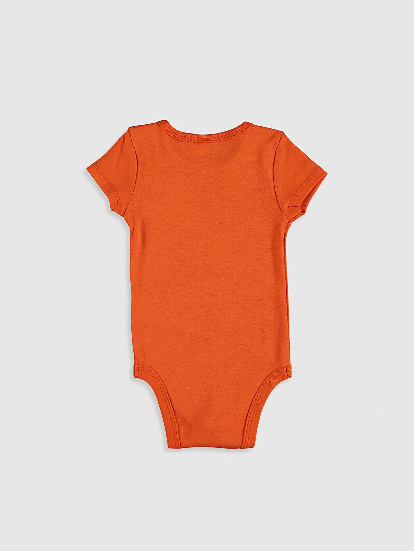 %100 Pamuk Kız Bebek Baskılı Çıtçıtlı Body