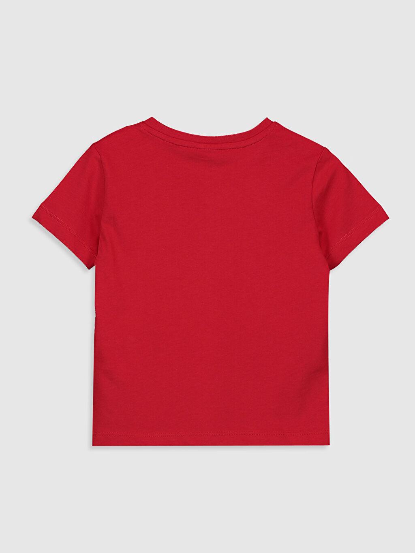 %100 Pamuk %100 Pamuk Tişört Bisiklet Yaka Kısa Kol Standart Baskılı Erkek Çocuk Yazı Baskılı Pamuklu Tişört