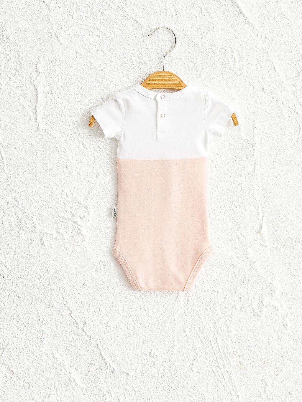 Kız Bebek Antebies Organik Pamuklu Kız Bebek Çıtçıtlı Body