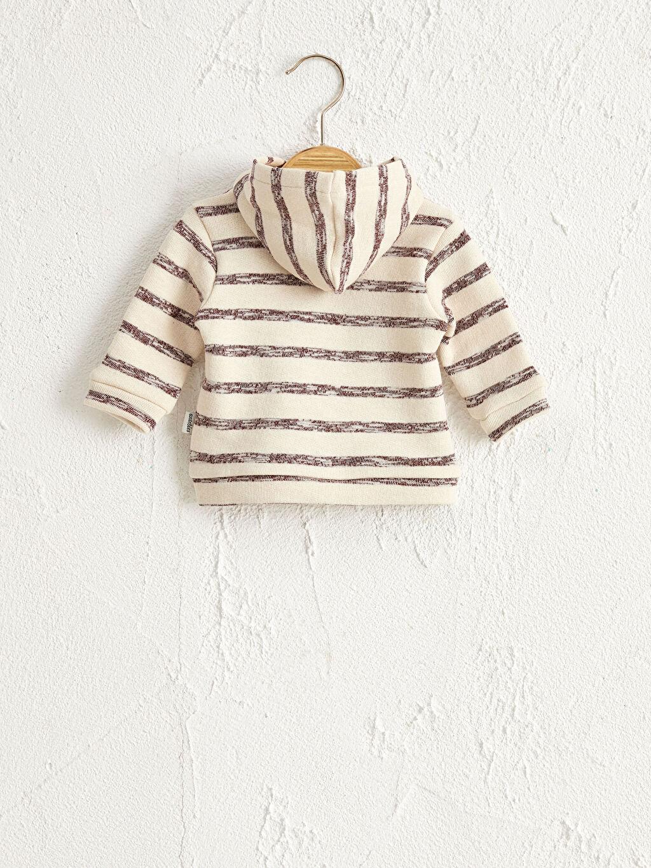 Organik Pamuk Spor Hırka Antebies Organik Pamuklu Erkek Bebek Fermuarlı Sweatshirt