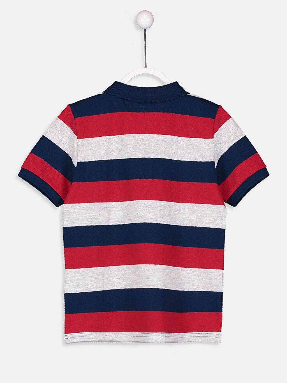%99 Pamuk %1 Polyester Çizgili Normal Tişört Polo Erkek Çocuk Çizgili Pamuklu Tişört