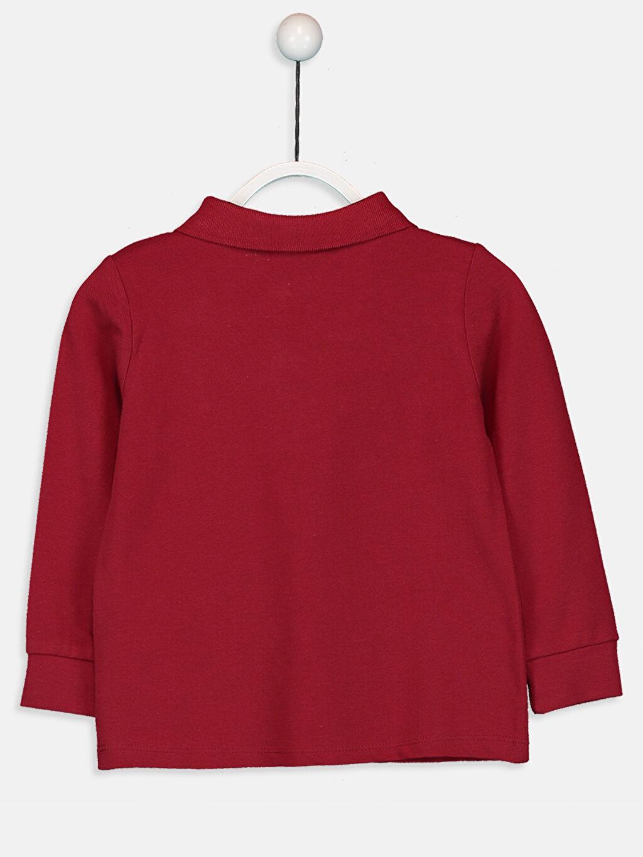 %100 Pamuk Standart Tişört Pike Polo Yaka Uzun Kol Düz Kız Çocuk Pamuklu Basic Tişört