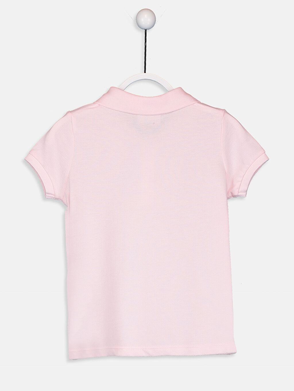 %100 Pamuk Standart Tişört Pike Polo Yaka Kısa Kol Düz Kız Çocuk Polo Yaka Pamuklu Basic Tişört