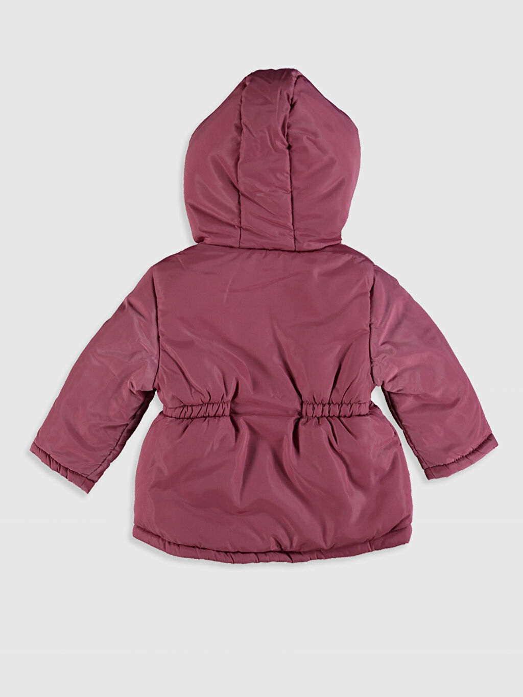 %100 Polyester %100 Polyester Mont Kız Bebek Mont