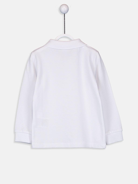 %100 Pamuk Tişört Pike Günlük Polo Yaka Düz Aksesuarsız Standart Erkek Bebek Pamuklu Polo Yaka Tişört