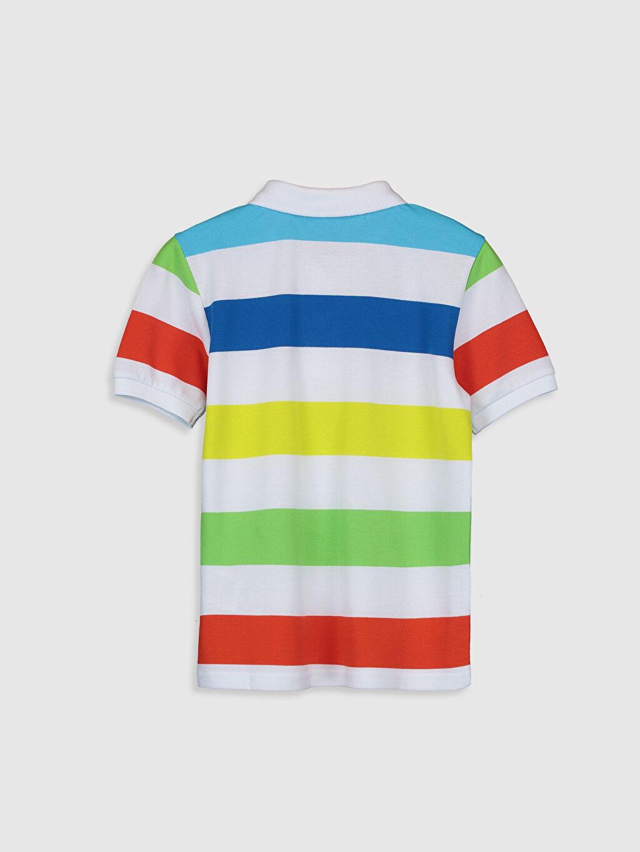%100 Pamuk Standart Tişört Pike Polo Yaka Kısa Kol Çizgili %100 Pamuk Erkek Çocuk Çizgili Pamuklu Tişört