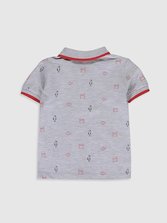 %98 Pamuk %2 Viskon Baskılı Tişört Pike Günlük Polo Yaka Kısa Kol Aksesuarsız Standart %100 Pamuk Erkek Bebek Baskılı Tişört