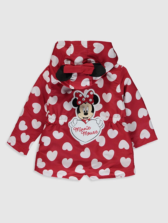 %100 Polyester %100 Pamuk Mont Kız Bebek Minnie Mouse Baskılı Kapüşonlu Mont