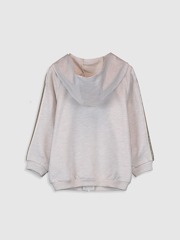%95 Pamuk %5 Polyester Sweatshirt Günlük İki İplik Kapüşonlu Düz Kız Bebek Fermuarlı Sweatshirt