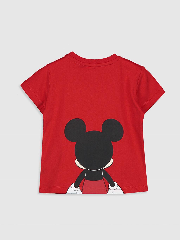 %100 Pamuk Normal Baskılı Kısa Kol Tişört Bisiklet Yaka Erkek Bebek Mickey Mouse Baskılı Pamuklu Tişört