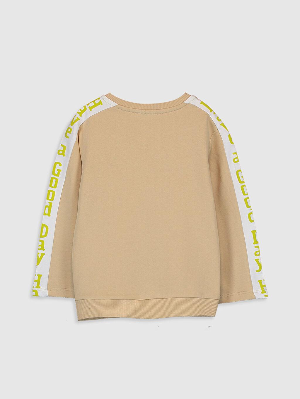 %100 Pamuk %100 Pamuk Düz Sweatshirt Standart Bisiklet Yaka Günlük Aksesuarsız Sweatshirt Erkek Bebek Basic Sweatshirt