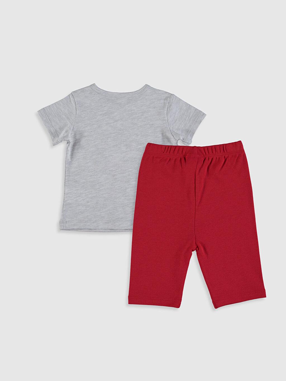 %98 Pamuk %2 Polyester %100 Pamuk Süprem Standart Pijama Takım Erkek Bebek Baskılı Pijama Takımı