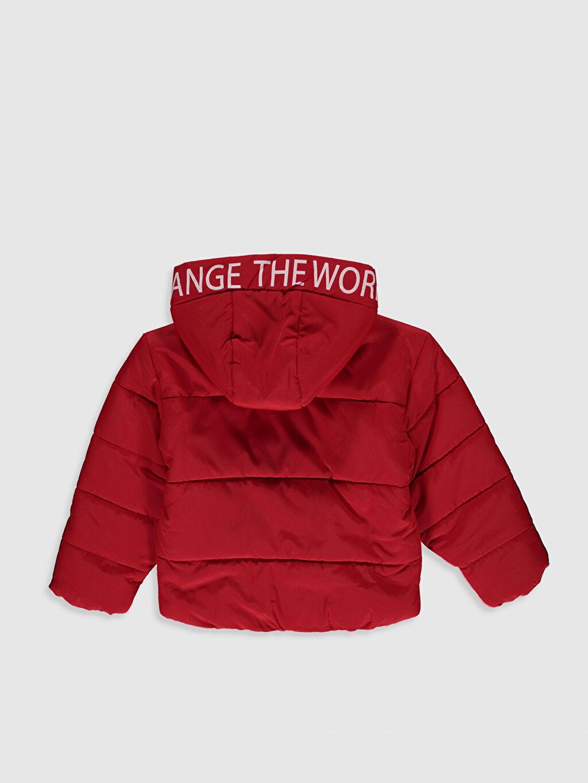 %100 Polyester %100 Polyester Orta Mont Kız Çocuk Kapüşonlu Mont
