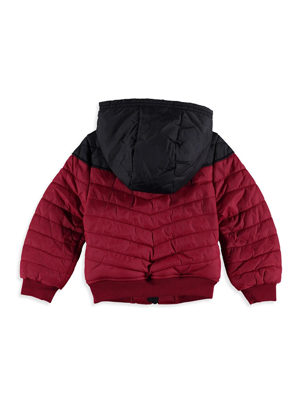 %100 Poliamid %100 Polyester Kalın Mont Erkek Bebek Polar Astarlı Kalın Mont