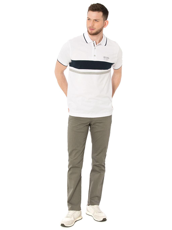 Erkek Çizgili Polo Yaka Kısa Kollu Pike Tişört