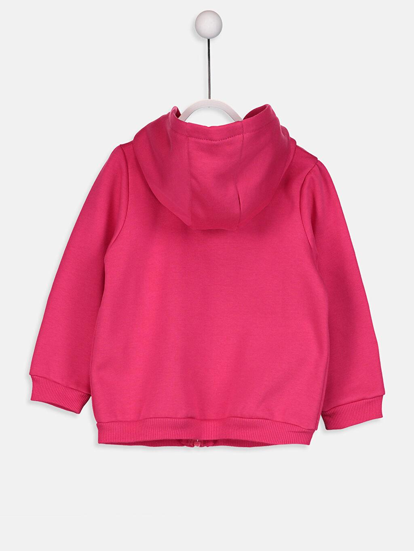 %71 Pamuk %29 Polyester  Kız Bebek Kapüşonlu Fermuarlı Sweatshirt