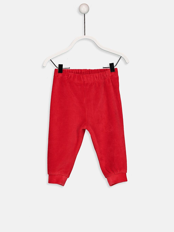 %78 Pamuk %22 Polyester Standart Pijamalar Erkek Bebek Kadife Pijama Alt 2'li