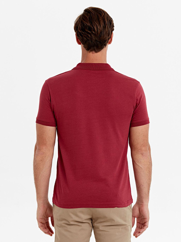 Erkek Polo Yaka Basic Kısa Kollu Tişört