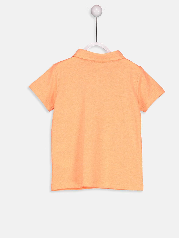 %50 Pamuk %50 Polyester Normal Kısa Kol Tişört Düz Polo Erkek Bebek Polo Yaka Tişört