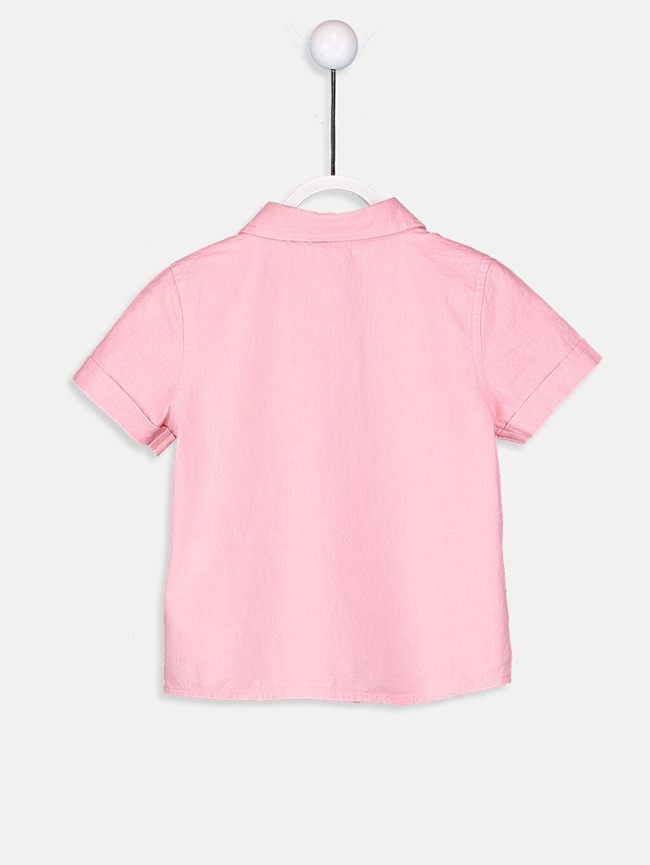 %100 Pamuk Standart Kısa Kol Düz Erkek Bebek Gömlek