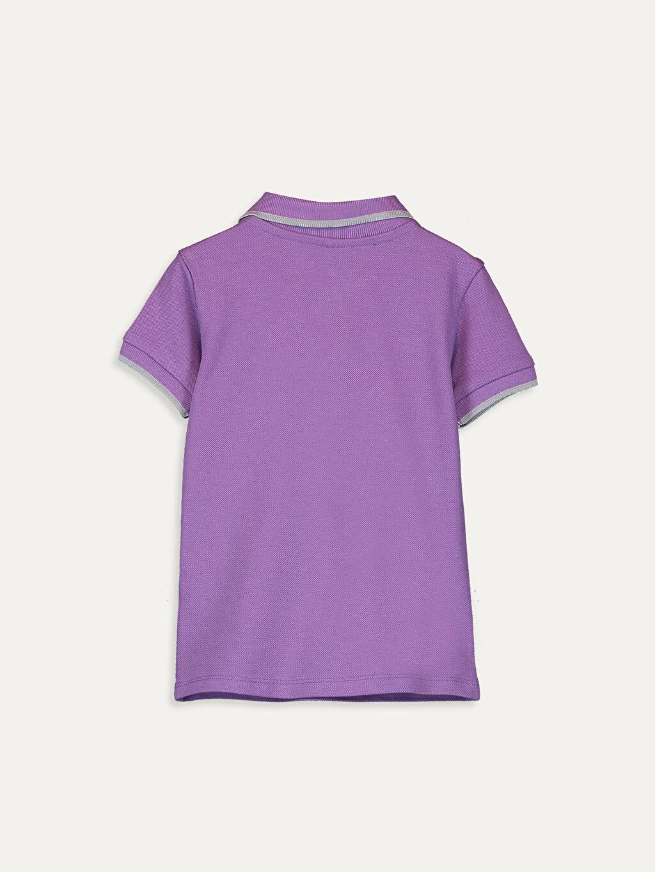 %100 Pamuk Kısa Kol Tişört Polo Normal Erkek Bebek Pamuklu Tişört