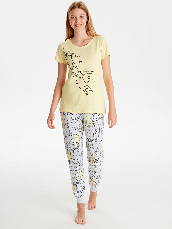 %100 Pamuk Standart Pijamalar Baskılı Pamuklu Pijama Takımı