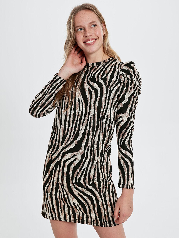 Ekru Quzu Zebra Desenli Elbise 9WA616Z8 LC Waikiki