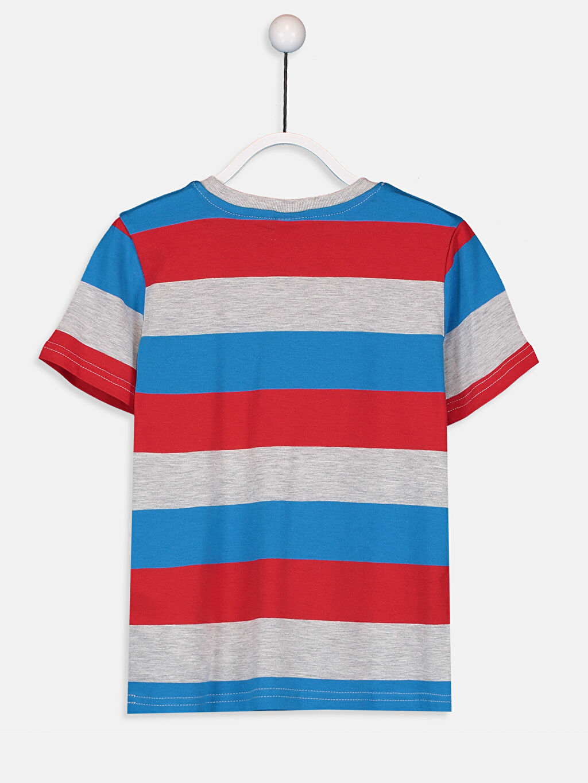 %82 Pamuk %18 Polyester Çizgili Normal Bisiklet Yaka Tişört Kısa Kol Erkek Çocuk Çizgili Basic Tişört