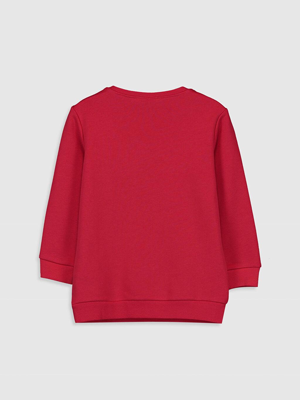 %67 Pamuk %33 Polyester  Kız Çocuk Minnie Mickey Mouse Baskılı Sweatshirt