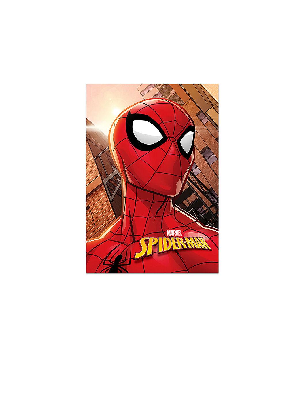 Çok Renkli Spiderman Çizgili Defter 9WR178Z4 LC Waikiki