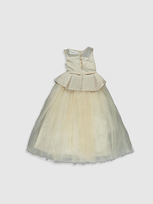Desenli Daisy Girl Kız Çocuk Transparan Detaylı Abiye Elbise