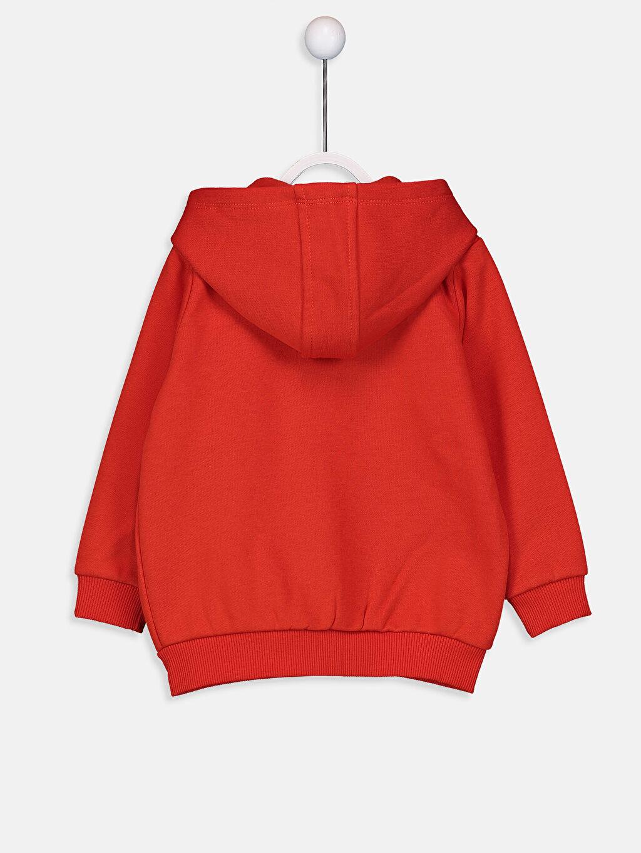%67 Pamuk %33 Polyester  Erkek Bebek Kapüşonlu Fermuarlı Sweatshirt