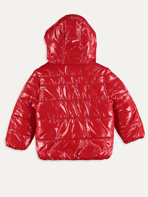 %100 Polyester %100 Polyester Mont Kız Bebek Fermuarlı Mont