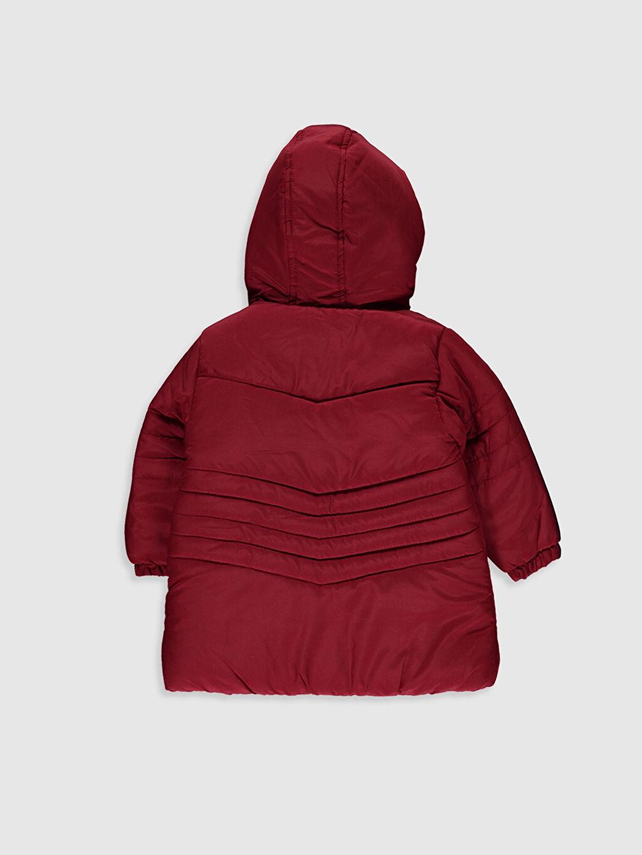 %100 Polyester %100 Polyester Kaban Kız Bebek Fermuar Kapamalı Kaban