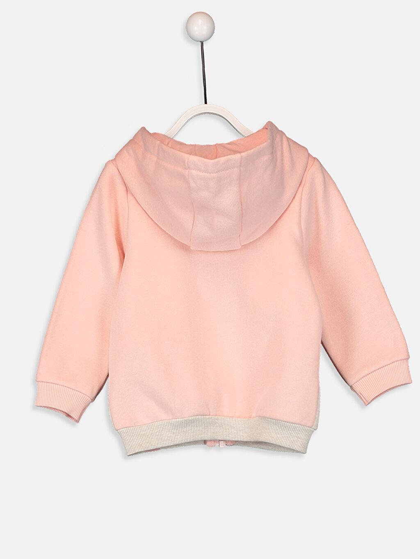 %65 Pamuk %35 Polyester %100 Pamuk  Kız Bebek Kapüşonlu Fermuarlı Sweatshirt