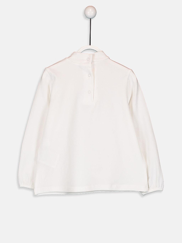 %94 Pamuk %6 Elastan Standart Düz Uzun Kol Tişört Balıkçı Yaka Kız Bebek Pamuklu Basic Tişört