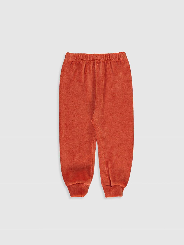 Erkek Bebek Kadife Pijama Takımı