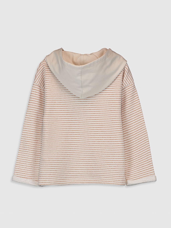 %100 Pamuk  Erkek Bebek Sweatshirt