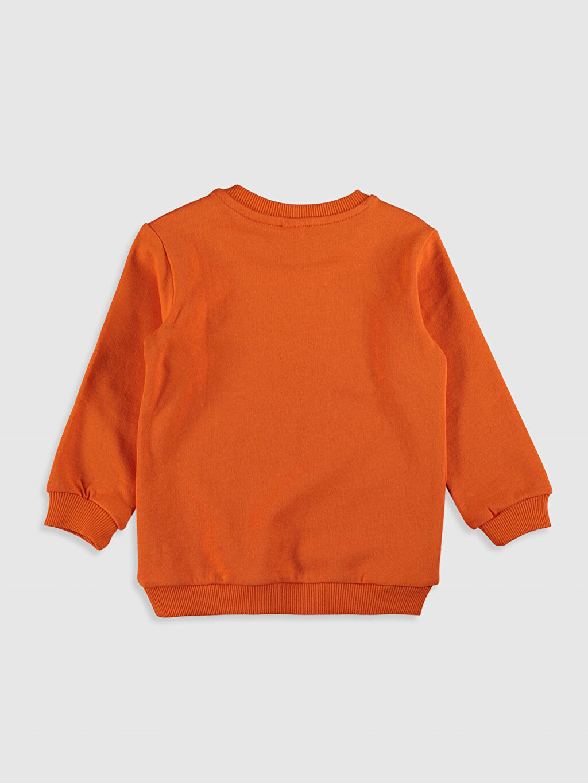 %100 Pamuk  Erkek Bebek Desenli Sweatshirt