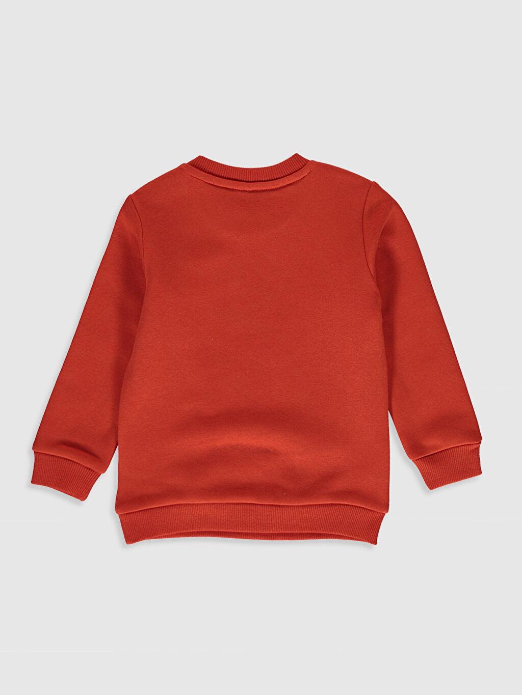 %85 Pamuk %15 Polyester  Erkek Bebek Baskılı Sweatshirt