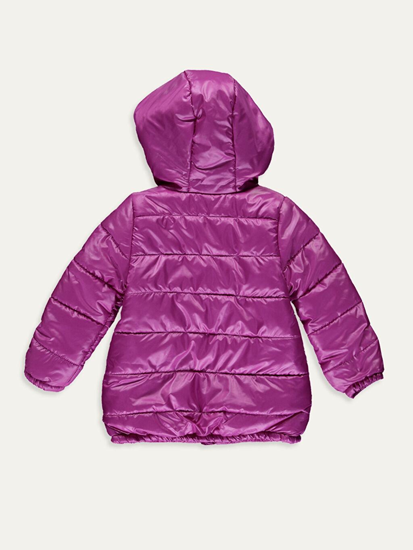 %100 Polyester %100 Polyester Orta Mont Kız Bebek Kapüşonlu Fermuarlı Mont