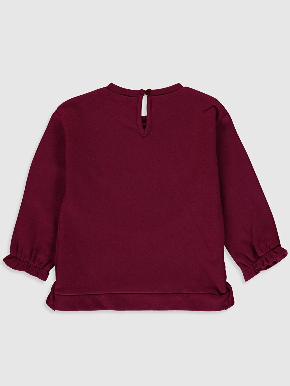 %100 Pamuk  Kız Bebek Slogan Baskılı Sweatshirt