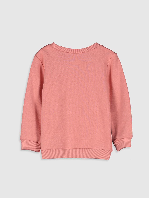 %71 Pamuk %29 Polyester  Kız Bebek Yazı Baskılı Sweatshirt