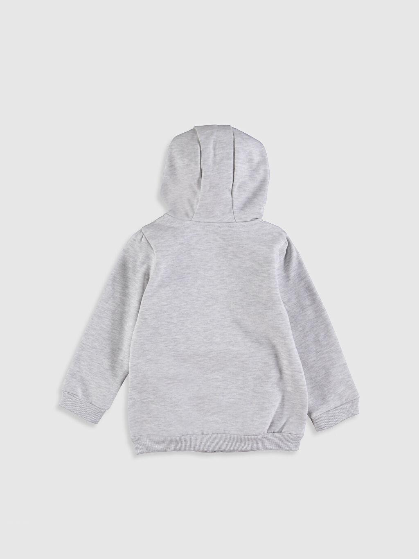 %67 Pamuk %33 Polyester  Kız Bebek Kapüşonlu Fermuarlı Sweatshirt