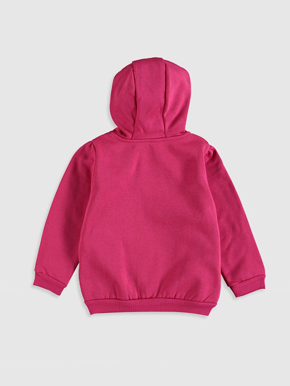 %70 Pamuk %30 Polyester  Kız Bebek Kapüşonlu Fermuarlı Sweatshirt