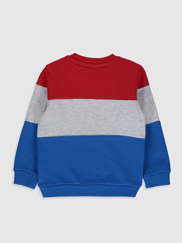 %88 Pamuk %12 Polyester  Erkek Bebek Baskılı Sweatshirt