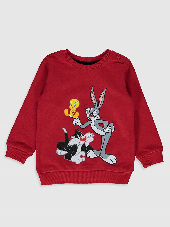 Kırmızı Erkek Bebek Looney Tunes Baskılı Sweatshirt 9WY377Z1 LC Waikiki
