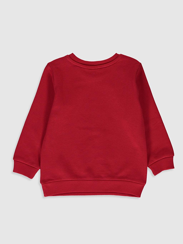 %84 Pamuk %16 Polyester  Erkek Bebek Looney Tunes Baskılı Sweatshirt