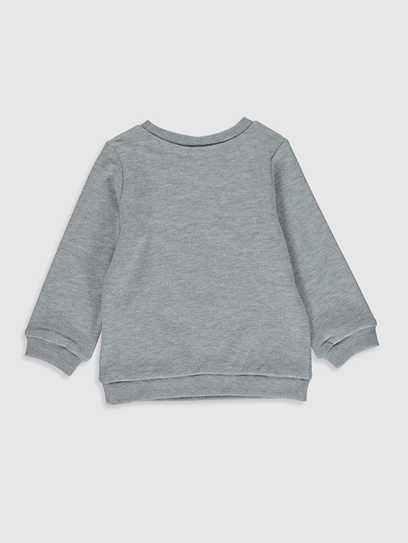 %45 Pamuk %55 Polyester  Kız Bebek Baskılı Sweatshirt