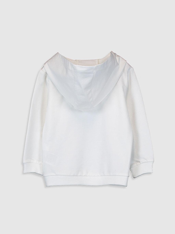 %100 Pamuk  Erkek Bebek Kapüşonlu Sweatshirt